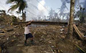 Se necesitan urgentemente fondos para ayudar a los campesinos a limpiar sus tierras y plantar sus cultivos.