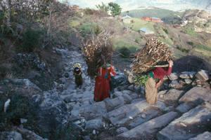 fao-montana-agricultura