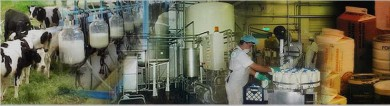 bcv.min industria-industria