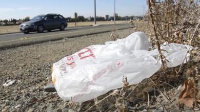 california-bolsa- plastico-prohibicion