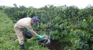 fertilizantes-regulacion-precios