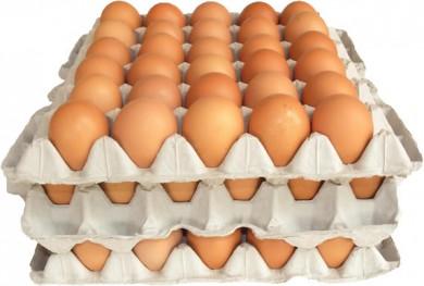 huevos-subsidio