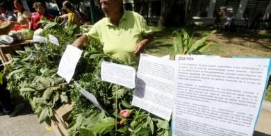 agricultura-urbana-congreso-crisis