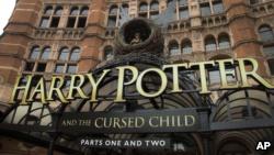 harry potter-octavo-libro