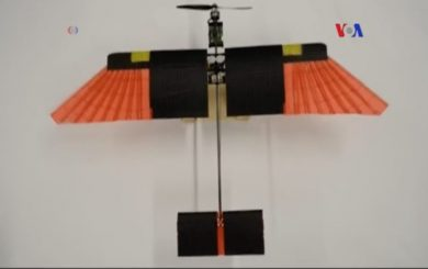 dron-ave-plumas-tecnologia